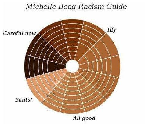 Previously Unchartered Gulf Waters: This Racism Guide that lampoons Boag's 'barely coffee coloured' assessment was posted on social media.